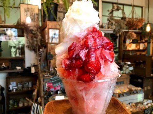館山産いちご果肉たっぷりかき氷