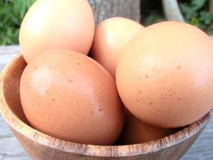 平飼い有精卵:鶏卵(千葉県南房総市)