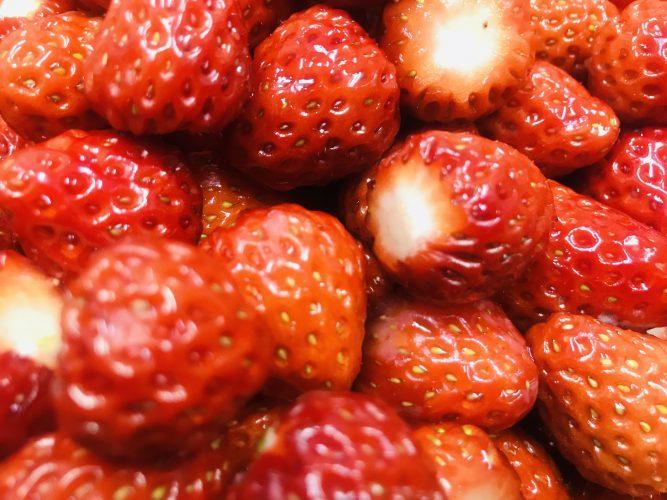 GWに向けて!館山産いちご果肉たっぷりかき氷の準備開始!してると…可愛いやつがいた話。